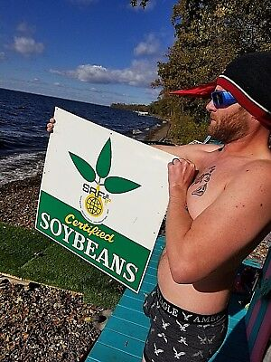 Soybean Sprouts - Vintage Feed Seed Farm SPF soybean metal sign W/ seed Sprout Graphic