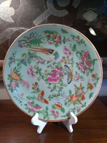 Antique Chinese Porcelain Plate Famille Rose Fencai Celadon Large