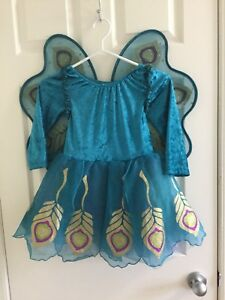 girls Gymboree Halloween costume with all accessories sz 7/8