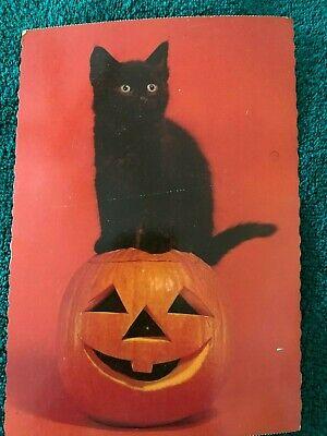 Vintage Hallmark Made in USA Cute Halloween Cat & Pumpkin Large Postcard