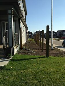 Fence Posts Installed