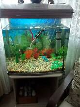 Fish tank with 14 tropical fish Salisbury Salisbury Area Preview