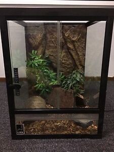 Reptile tank Medowie Port Stephens Area Preview