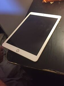 Mint Condition 10/10 iPad (2017) with case