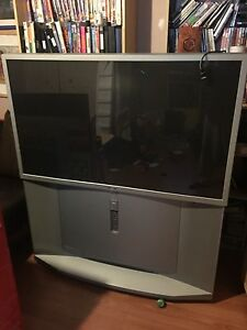 Sony 50' tv. Good for gamers.