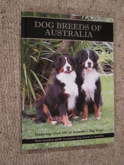 Dog Breeds of Australia, Your guide to Popular Dog Breeds in Aust
