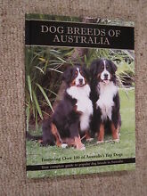 Dog Breeds of Australia, Your guide to Popular Dog Breeds in Aust Tamworth City Preview