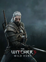 Witcher 3 Poster The Witcher 3 Wild Hunt Game Art A3 -  - ebay.co.uk