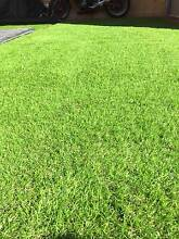 artificial turf - synthetic grass 5mx2m and 3mx2m Gordon Tuggeranong Preview