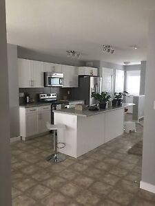 New house for short term rent