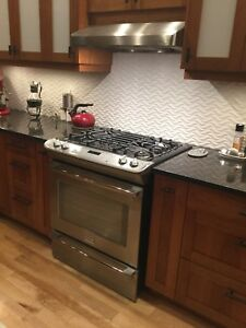 Frigidaire Professional Dual Fuel 30 inch stove