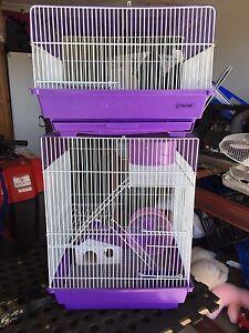 RAT/Ferret Cages Edgeworth Lake Macquarie Area Preview