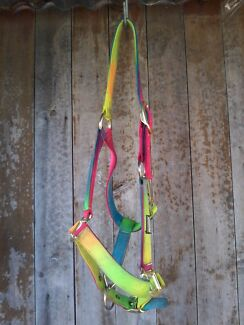 Halter - with lead rope, roma, rainbow Lorn Maitland Area Preview