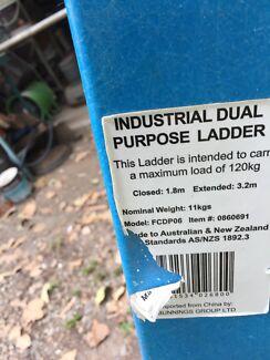 Dual purpose ladder