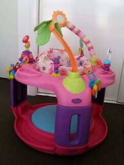 Exersaucer  Aberglasslyn Maitland Area Preview