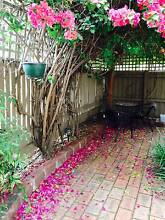 2 Short term (2 month) rooms in a share house- GR8 location Balaclava Port Phillip Preview