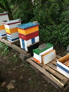 Bee nucleus hives for sale