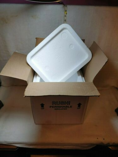 Styrofoam Insulated Cooler Shipping Container - Box - 12.5 x 11.5 x 9.5 - 2 ice