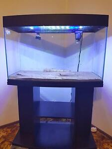 Fish tank complete with stand and pump South West Rocks Kempsey Area Preview