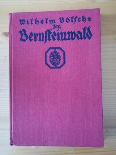 Kosmos Sachbuch / Bändchen: IM BERNSTEINWALD / Wilhelm Bölsche / geb. 1927
