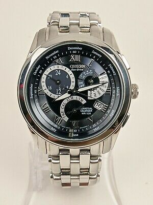Citizen Eco Drive Perpetual Calendar Stainless Mens Watch E870-S015278