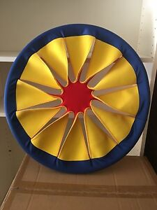 Giant frisbee (60cm diameter) Dee Why Manly Area Preview