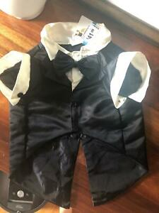 XL dog tuxedo