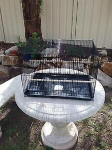 Flight Cages Wauchope Port Macquarie City Preview