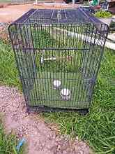 Large parrot cage Gawler Gawler Area Preview
