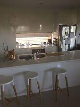 Room for rent Port Macquarie $220 Port Macquarie 2444 Port Macquarie City Preview