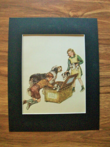 Print Sheepdog Kids Vernon Stokes Trunk Of Puppies Bookplate 1947 11x14 Matted