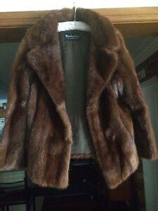berkeley furs gumtree australia free local classifieds