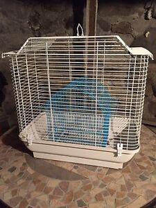 cage hagen belvedere et cage de transport