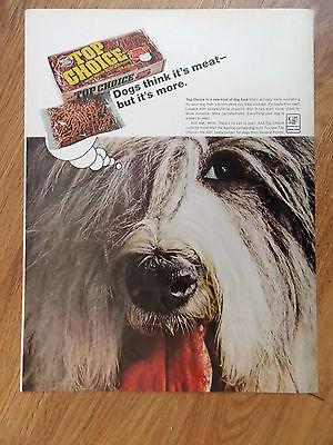 1967 Top Choice Dog Food Ad  Old English Sheep Dog