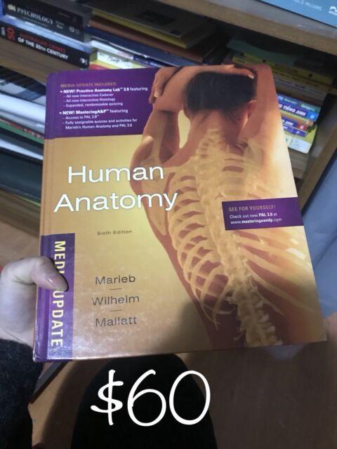 Human Anatomy 6th Edition - Marieb, Wilhelm, Mallatt | Textbooks ...