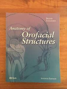 Anatomy of Orofacial Structures Brisbane City Brisbane North West Preview