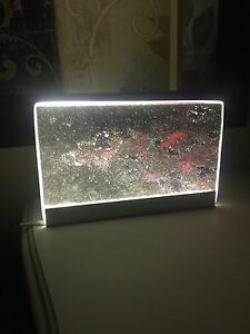 Glass Light - $15