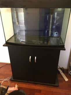 140 litre fish tank complete set up with stand