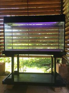 Fish/Reptile tank Cooktown Cook Area Preview