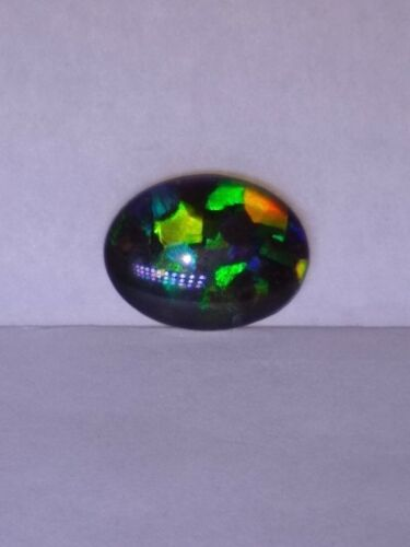 Beautiful multi color ammolite