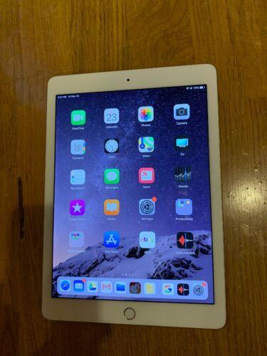 Apple iPad Pro 1st Gen. 256GB, Wi-Fi + Cellular (Verizon), 9.7in - Gold