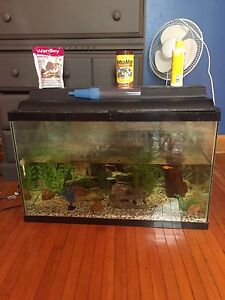 30 gallon fish tnak