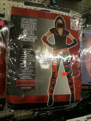Brand NEW Dragon Fighter Ninja Halloween Costume Women, Accessories Size Large