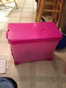Barbies, Barbie camper, case