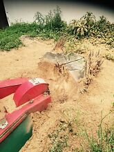 Cheap, Reliable Stump grinding and tree removal Jimboomba Logan Area Preview