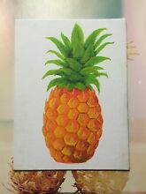 Pineapple Artwork Marks Point Lake Macquarie Area Preview