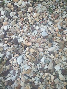 White Stone Rosebery Palmerston Area Preview
