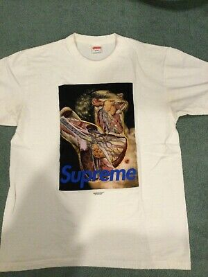 Supreme x Undercover Anatomy Tee Large