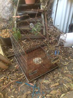 Cockatoo cage/bird cage Peregian Beach Noosa Area Preview