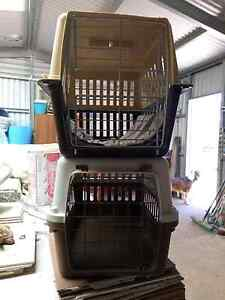 2 Cat Cages Loxton Loxton Waikerie Preview